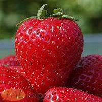 Receita de Vitamina de Morangos - morango