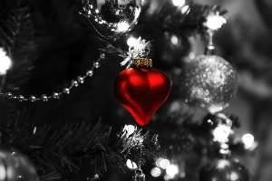 Receita de Feliz Natal!!! - feliz-natal