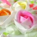 Rosas de Chantilly Pintadas