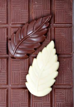 Receita de Placas, Arabescos e Enfeites de Chocolate  - dreamstime_xs_11296298