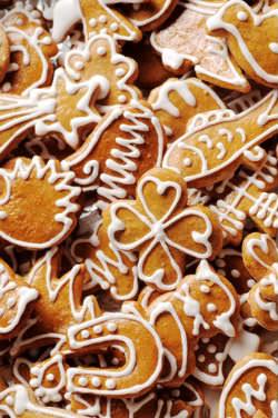 Receita de Biscoito de Gengibre - biscoito-de-gengibre