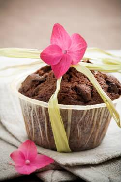 Receita de Cupcakes de Chocolate com Maçã - cupcakes-de-chocolate-com-maca