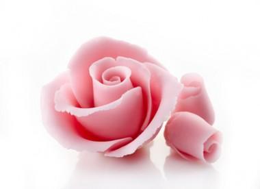 pink decorative sugar rose