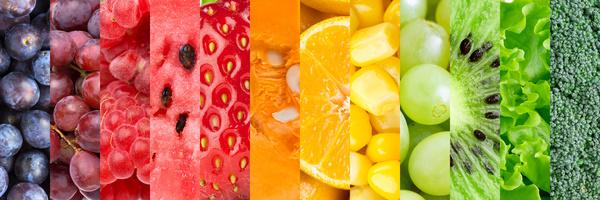 Frutas e vegetais organicos